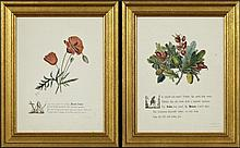 Pair of Colored Botanical Prints, late 19th c., each with a quote from Shakespeare, one Timon of Athens, Act 4, Scene 3, the other R...