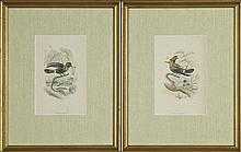 William Home Lizars (1788-1859),