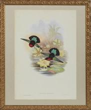 J. Gould and H. C. Richter,