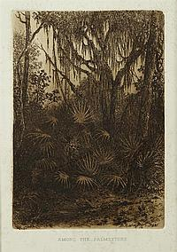 """†Bror AndersWikstrom (1854-1909), """"Among the Palmettoes,"""" 1887. etching, published in """"Arts & Letters"""" in New Orleans, framed, H.- 8..."""