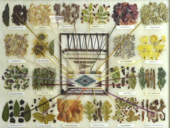 Native American, Navajo Sampler of Vegetal Dyes Used in Navajo Weaving, by Vera Myers, #878