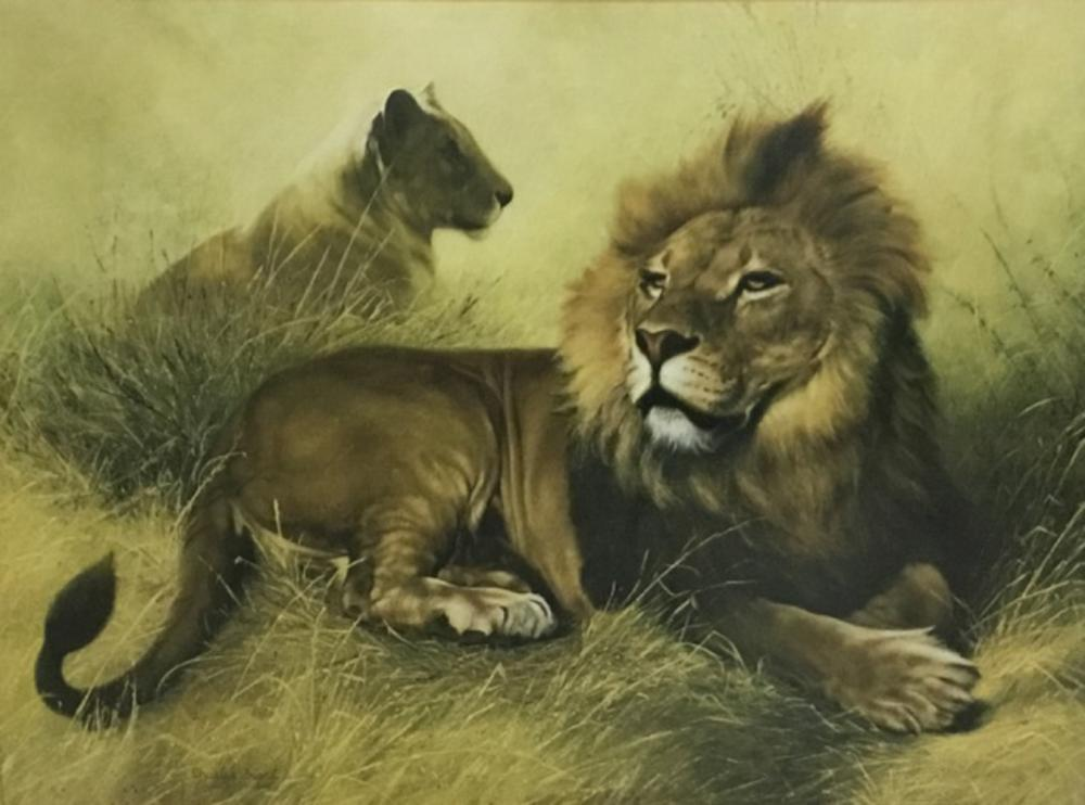 Sold Price Charles Frace Print Lion Lioness September 4 0120 12 00 Pm Edt Rfi is not responsible for the content of external websites. invaluable com