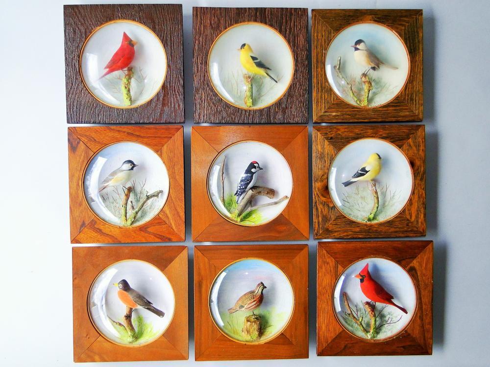 LOT OF NINE CARVED BIRD DIORAMAS