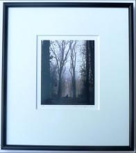 Michael Kenna: Fountain of Flora, Framed Signed Silver Gelatin Print - 1988