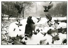 Bruce Davidson: Woman at the Pond, Central Park, Signed Platinum Print - 2008