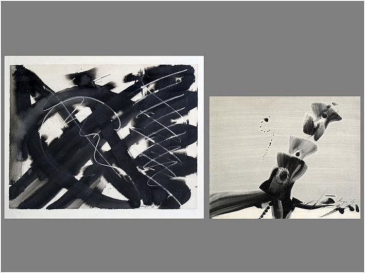 DECLERCQ HUGO (1930 - 1996) twee (§) werken : *