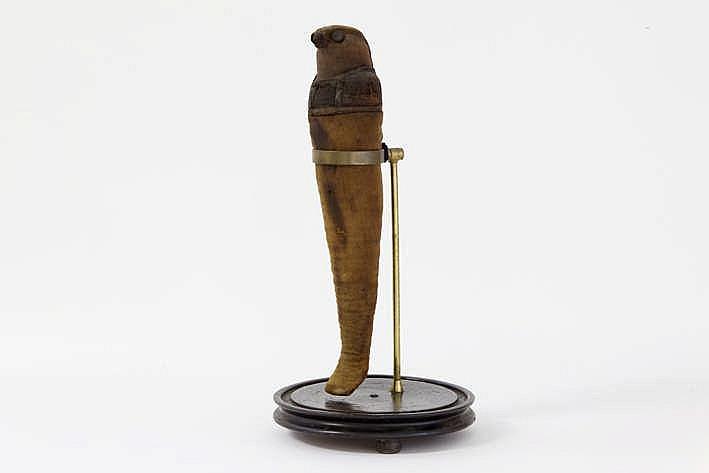 OUD-EGYPTE/PTOLEMAÏSCHE PERIODE (332-30 BC) zeer mooie en zeldzame mummie van een valk (hoogte : 40 5) verwijzend naar de god