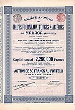 S.A. des Hauts-Fourneaux, Forges & Aciéries de Malaga (Espagne)