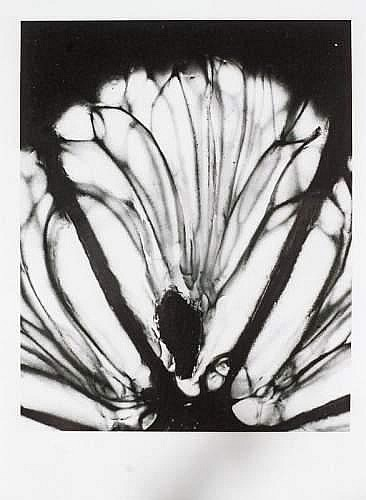 [ Photographs ] Denis BRIHAT (né en 1928) - Un