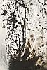 SHINICHI MARUYAMA (JPN/1968)  Sans titre, 2006