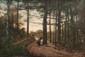 Ecole française du XIXème siècle  Paysage de forêt avec ramasseur de fagots.  Huile sur toile.  93 x 137 cm.