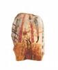 OSIRIS Cartonnage de toile de momie stuqué, peint et polychromé (jaune, rouge, noir, bleu) figurant Osiris debout, la tête tournée vers la droite, coiffé de la couronne atef et tenant ses attributs, sceptre heqa et fouet neheh. Deux uraei opposés
