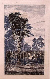 Mollinger, Alexander (1836-1867) Reisigsammlerin