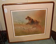 CONTEMPORARY ASIAN PRINT OF TIGER. Contemporary Asian print of tiger, signed lower left, set in gilt fillet, silk matte under glass in custom corner wood frame. Marked; unreadable signature. Size: window: 2!''H, 25''W. frame: 30 1/2''H, 34 3/4''W.