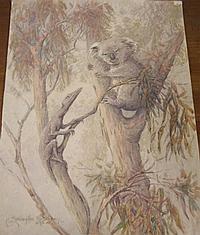 A. Erlington Rosebray, Australia, Watercolour