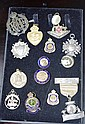 15 various badges mainly military