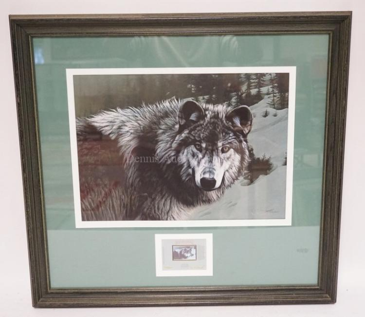 rod frederick limited edition print of a timber wolf editio. Black Bedroom Furniture Sets. Home Design Ideas