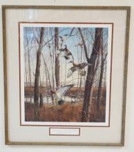 FRAMED LIM ED PRINT BY DAVID A. MAASS TITLED WOOD DUCKS- MISSISSIPPI FLYWAY. NO 589 OF 700. PENCIL SIGNED. 18 1/4 IN X 21 1/4 IN