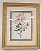 LARGE FRAMED BOTANICAL PRINT; *MOUNTAIN LAUREL*;