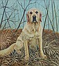 Jon Shaw Floss the Dog Oil on board 61 x 56 cm
