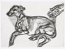LUCIAN FREUD 1922 - 2011, British, PLUTO AGED TWELVE, 2000, etching on Somerset White paper