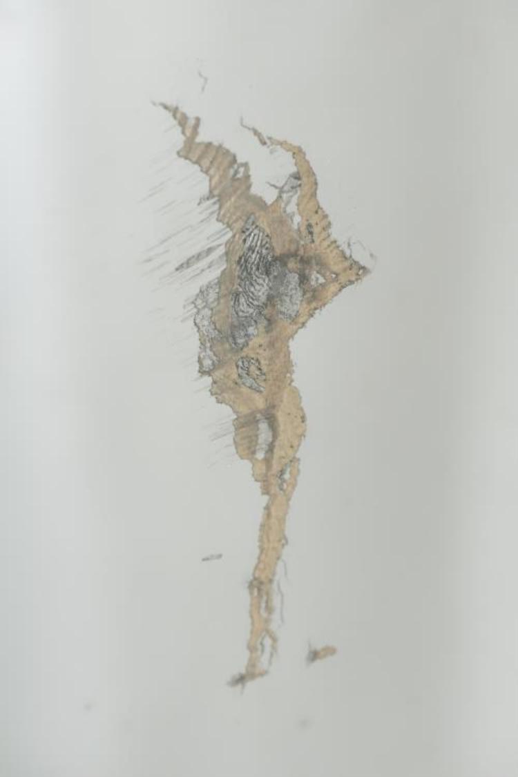 Miroir en bois dor attribu thomas chippendale - Miroir ancien bois dore ...