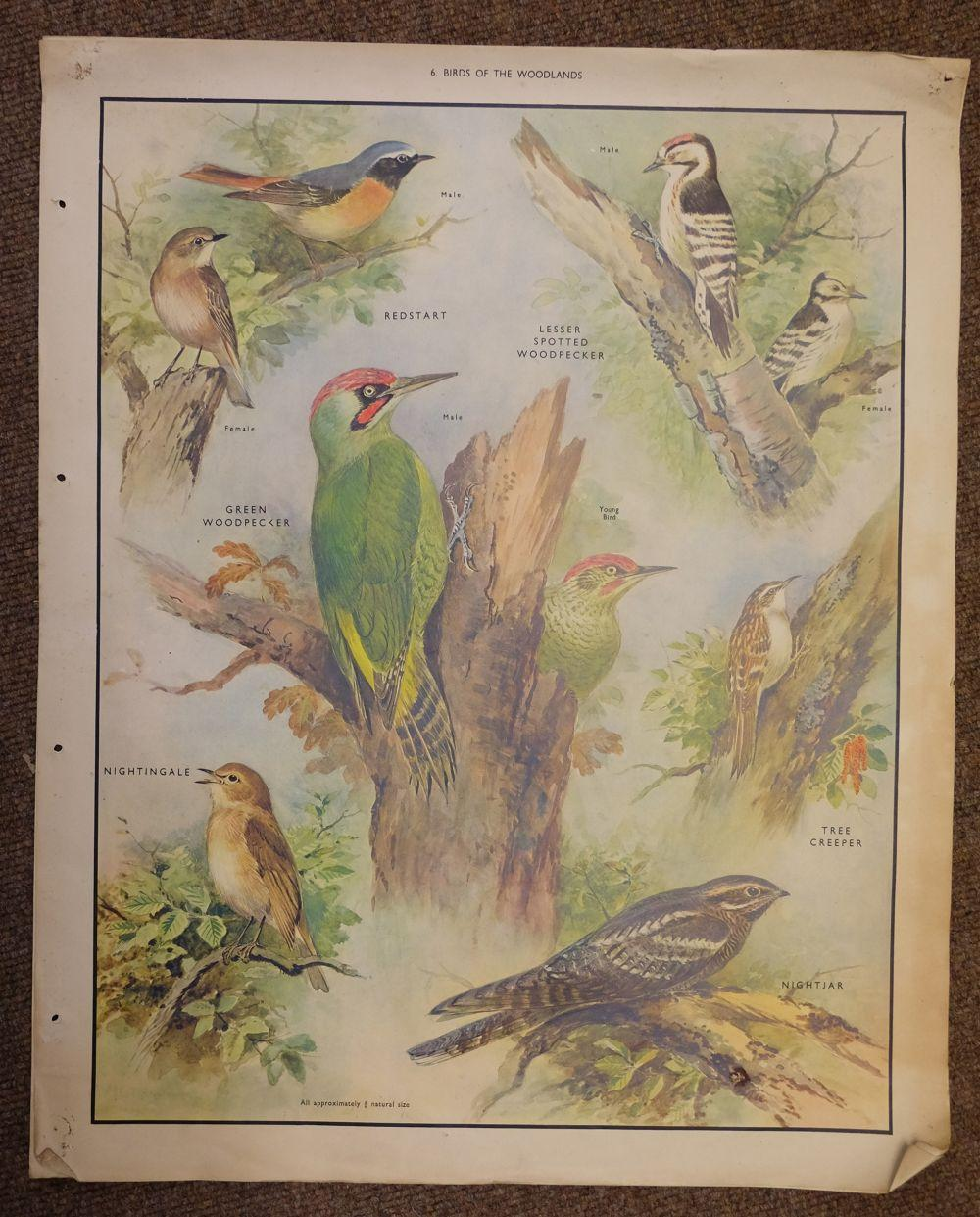 * Prints & engravings. A mixed collection of approximately 500 prints, 19th & 20th century,