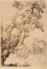 * Grimaldi (Giovanni Francesco, 1606-1680). Study of Trees in a River Landscape