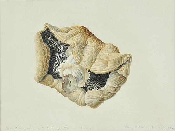 McEwen (Rory, 1932-1982). Mushroom, 1972,