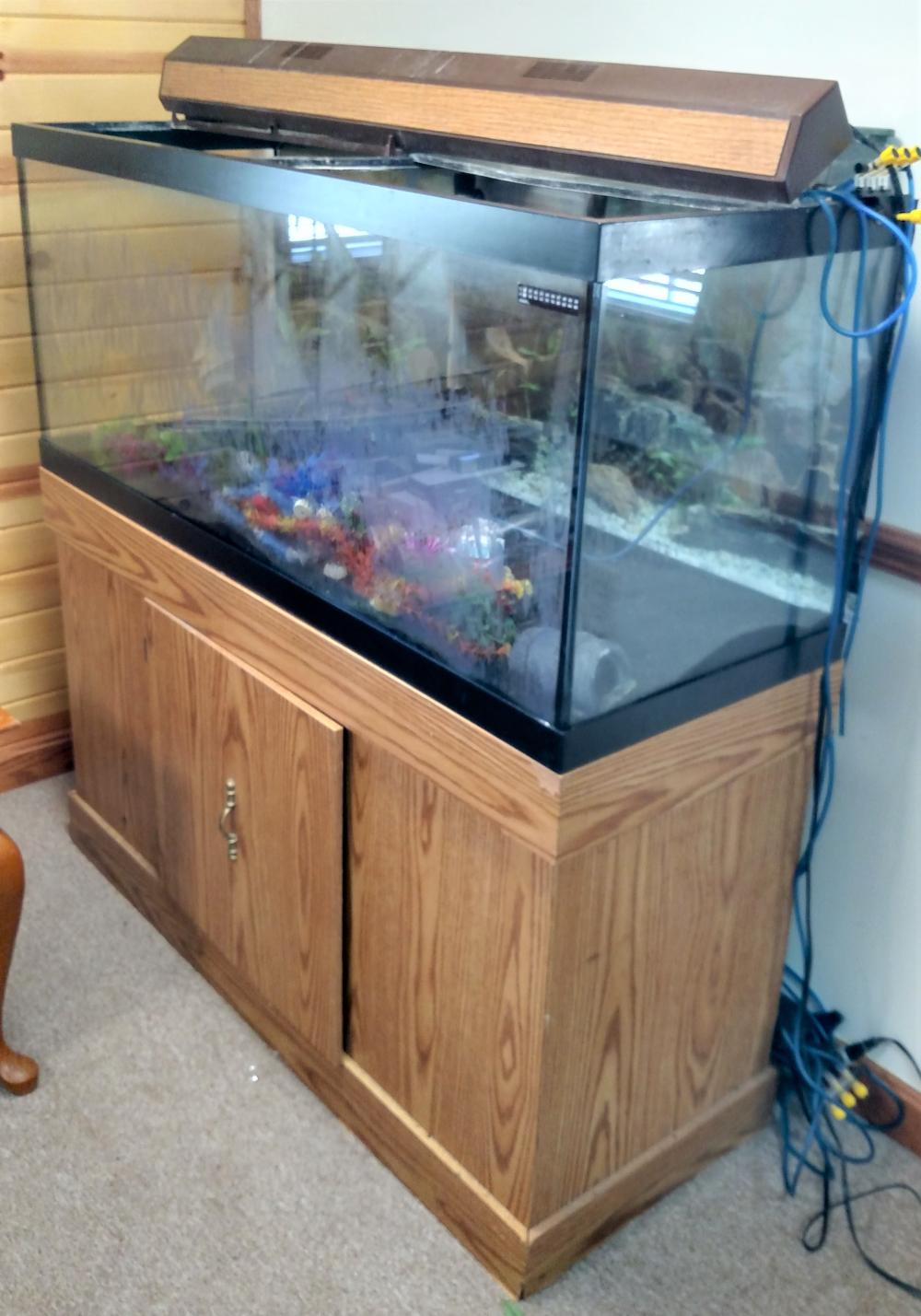 "aquarium on stand-- 4' long, 49"" tall, 18"" depth"