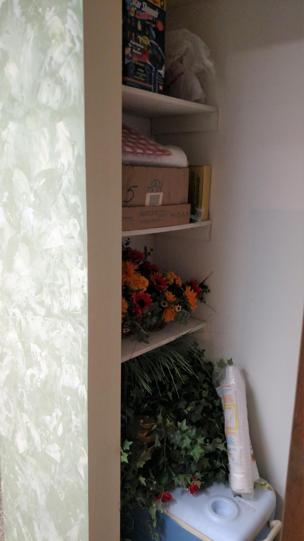 closet contents - easel, cooler, motion laser light, blankets,