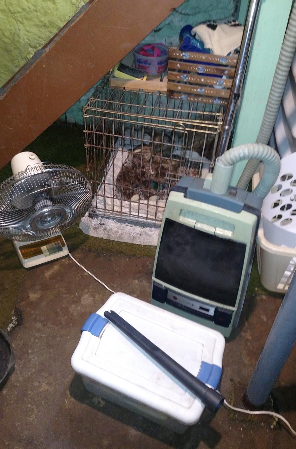 dog cage, fan, hoover tank sweeper-- rusty