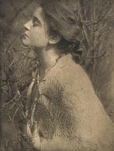 Edward Steichen (1879-1973) - Lilas Buds: Mrs. S., 1906
