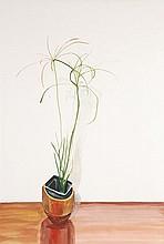 δ John Plumb (1927-2008). Botanical