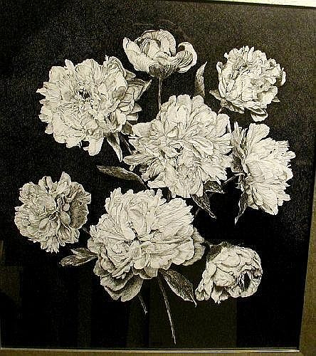 John Mayne (20th century British) pen and ink drawing, study of carnations, signed and dated '69, 56 x 50cms