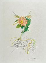 Salvador Dalí (1904-1989) - Dahlia (M.&L.227)