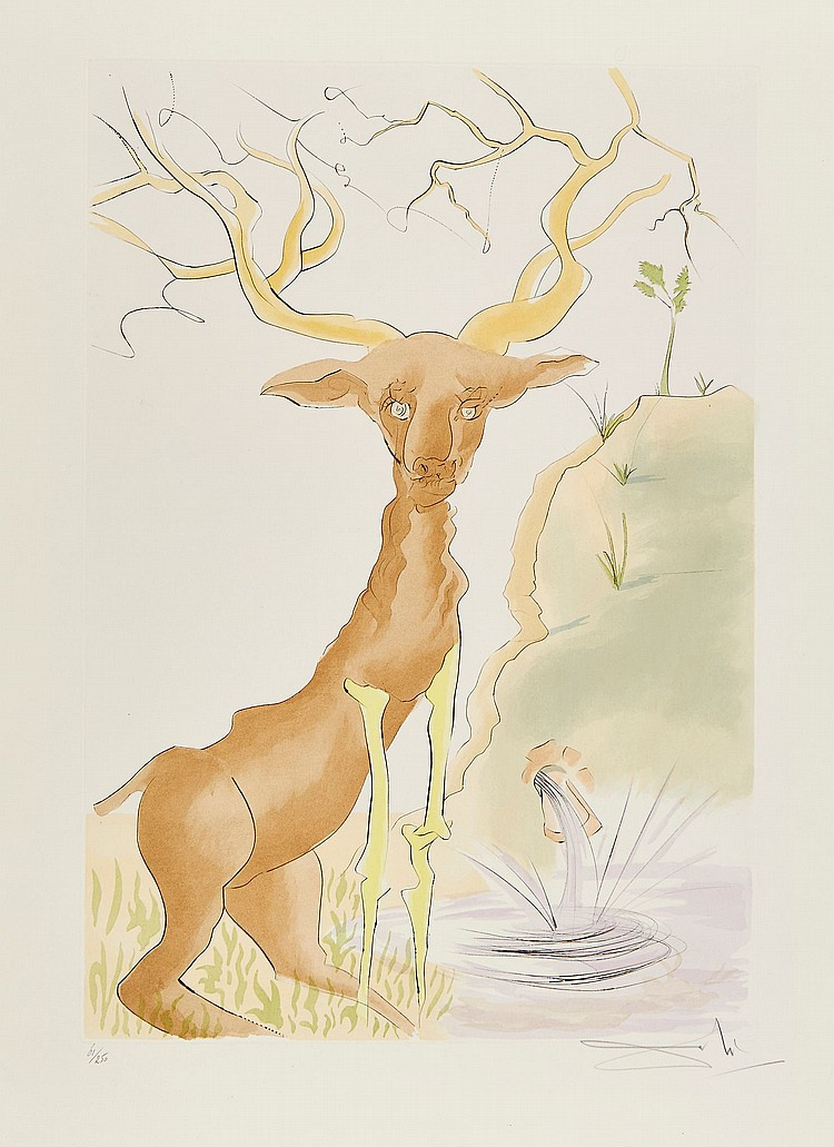 Salvador Dalí (1904-1989) - The Stag Reflected in the Water (M.&L.660)