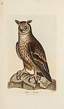 Graves (George) - British Ornithology: