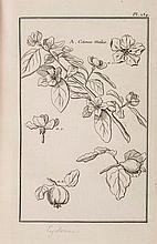 Garsault (François Alexandre de) - Les figures des plantes et animaux d'usage en médicine,
