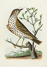 Bolton (James) - Harmonia Ruralis; or, An Essay towards a Natural History of British Song Birds,