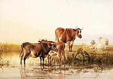 Thomas Sidney Cooper (1803-1902), Cattle in a