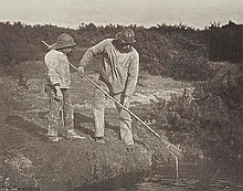 Peter Henry Emerson (1856-1936). Eel-Picking in