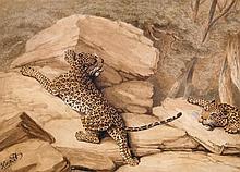 William Samuel Howitt (1765-1822) - A pair of leopards,
