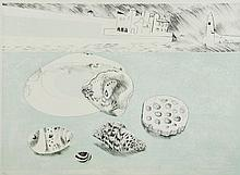 Mary Fedden (1915-2012) - Shells and Pebbles