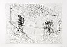 Bruce Nauman (b.1941) - House Divided