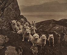 Charles Reid (1837-1929) - A Scottish Eleven , ca. 1880