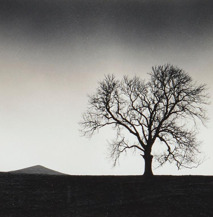 Michael Kenna (b.1953) - Mount Cloud & Savior Tree, Derbyshire, England, 1990