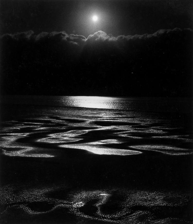 John Blakemore (b.1936); David Eddington ( - Paintings & Photographs, 1972