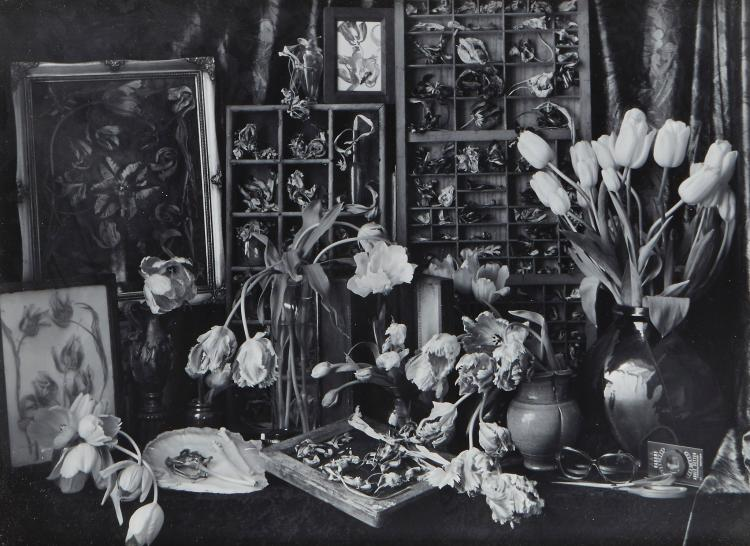 John Blakemore (b.1936) - Tulipomania, 1994