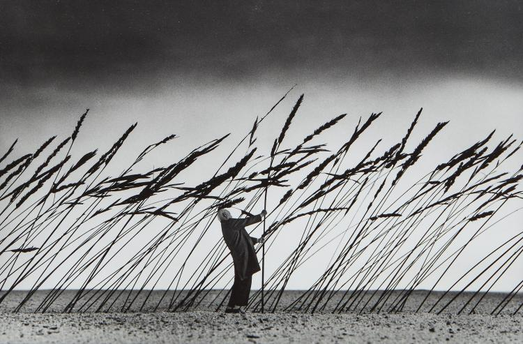Gilbert Garcin (b.1929) - Saving the nature, 2010